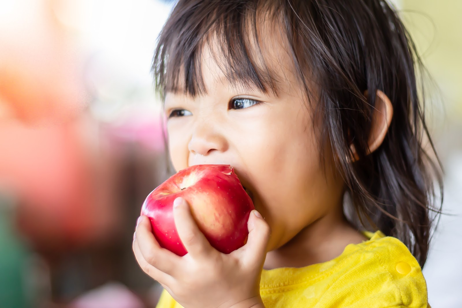 Healthy Food and Meal Ideas for Your Toddler